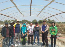 Tim Universitas Brawijaya Dorong Teknologi Ulir Filter, Bunker Air Tua dan Rumah Kristalisasi untuk Produksi Garam